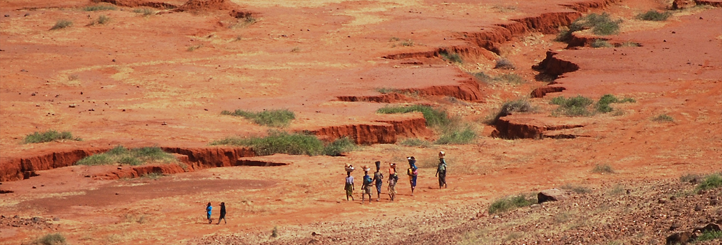 Sahel, Africa. 2009.